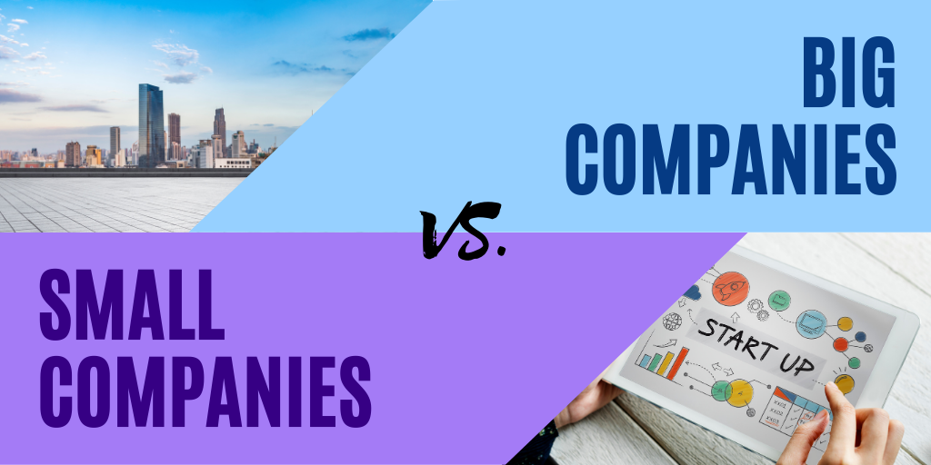 Big versus Small Companies